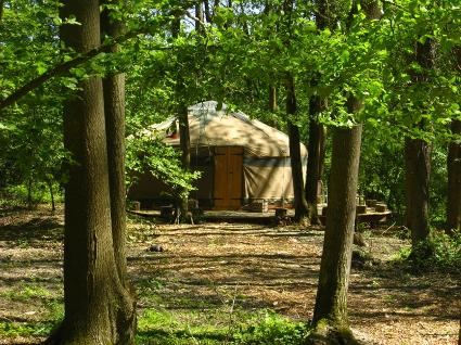 Forest Garden glamping, Yurts & Cabins - The Glamping Association
