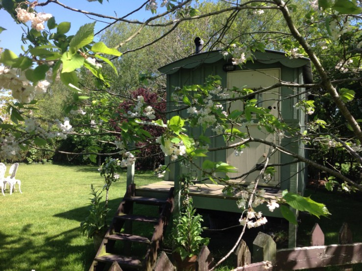 Somerset Staycations - glamping Burnham on Sea